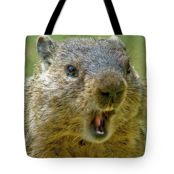 A Hungry Fellow  Tote Bag by Paul W Faust - Impressions of Light