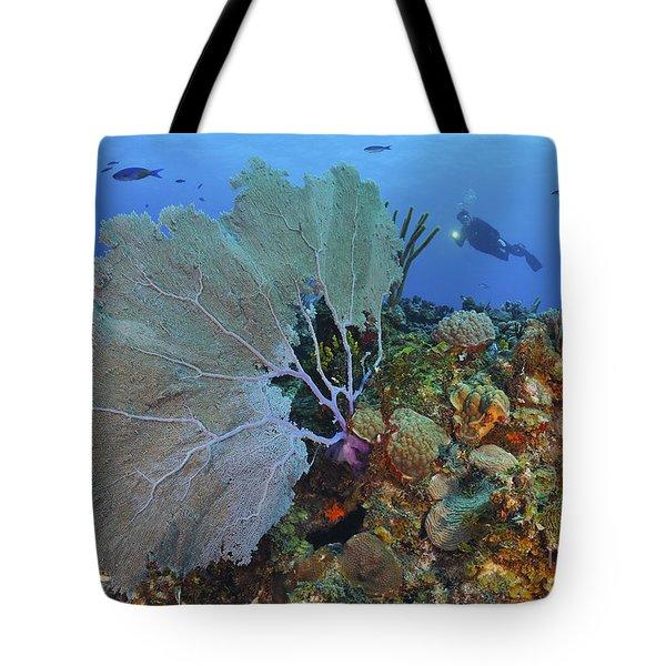 A Large Purple Sea Fan On Caribbean Tote Bag