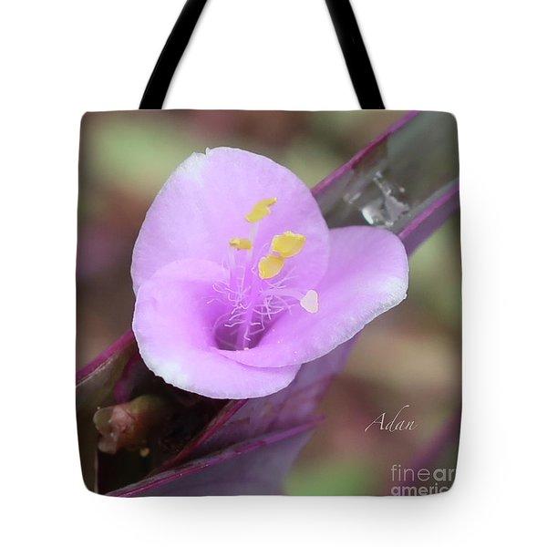 A Lavender Smile - Tradescantia Pallida Macro Square Tote Bag