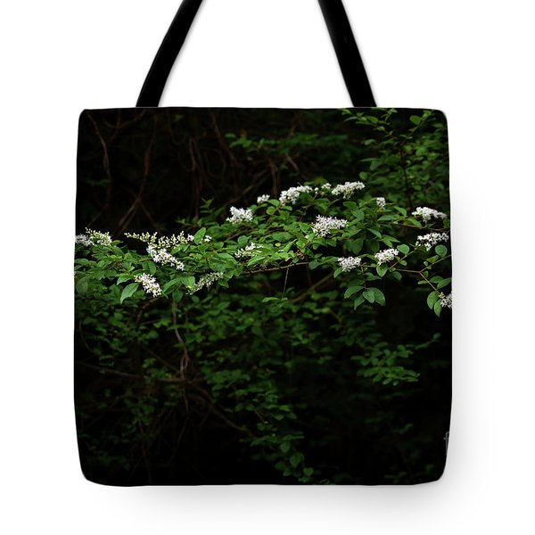 Tote Bag featuring the photograph A Light In The Darkness by Skip Willits