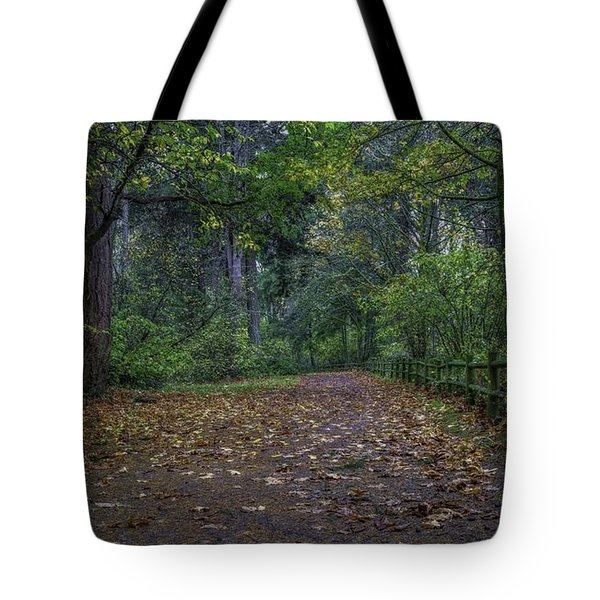 A Lincoln Park Autumn Tote Bag by Ken Stanback