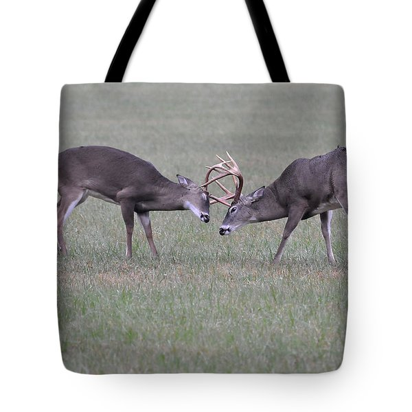 A Little Dispute Tote Bag by Todd Hostetter