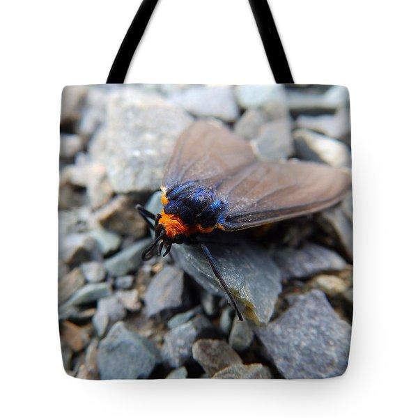 A Little Rest Tote Bag