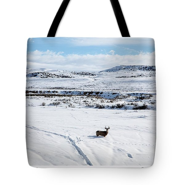 A Lone Buck Deer In Carbon County, Wyoming Tote Bag
