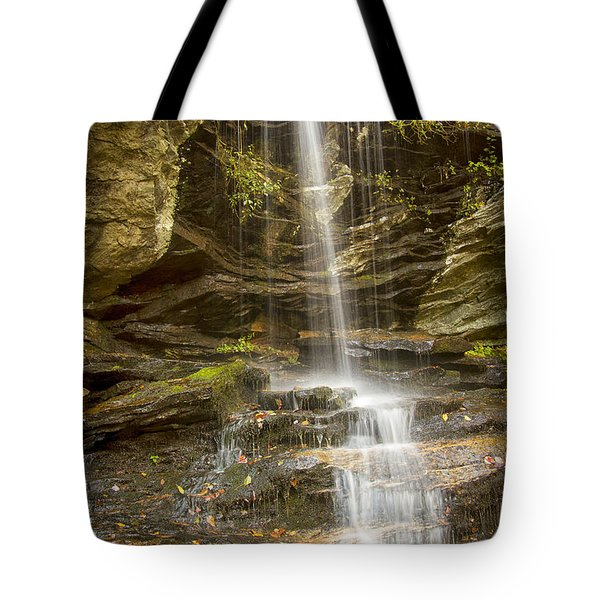 A Look At Window Falls Tote Bag