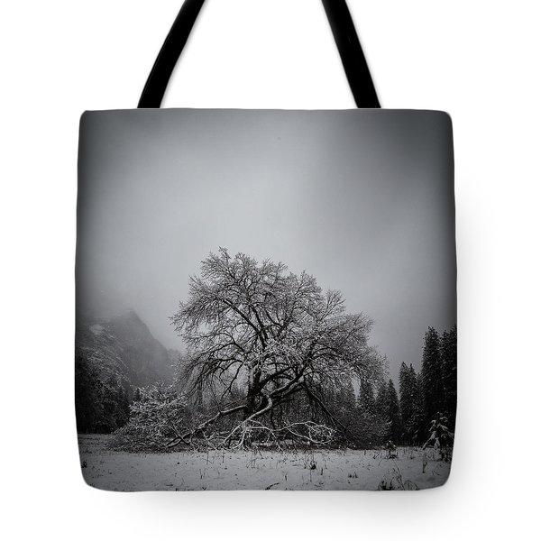 A Magic Tree Tote Bag
