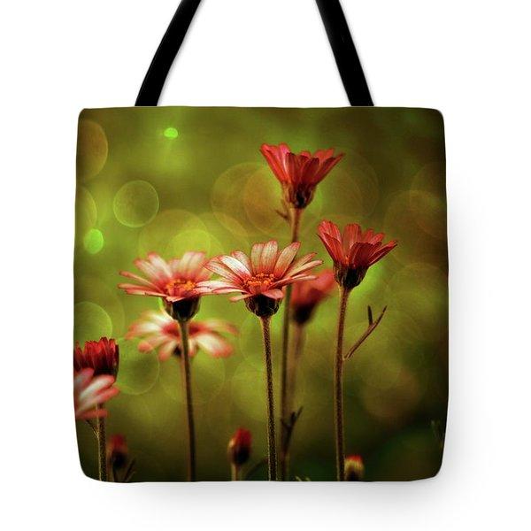 A Magical Evening Tote Bag