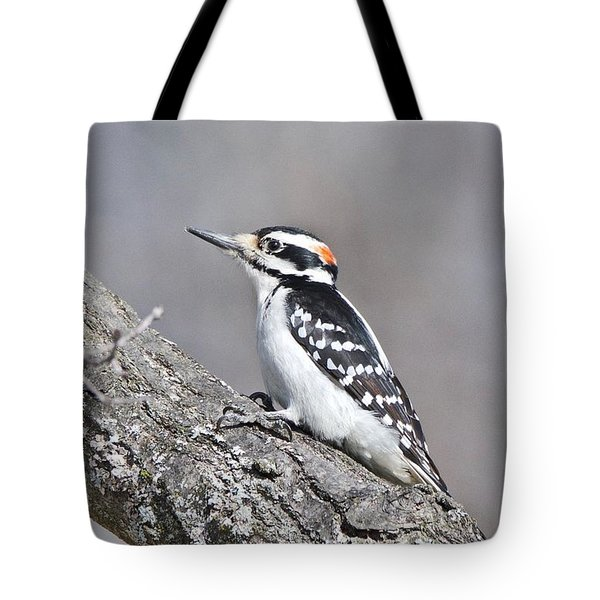 Tote Bag featuring the photograph A Male Downey Woodpecker 1120 by Michael Peychich
