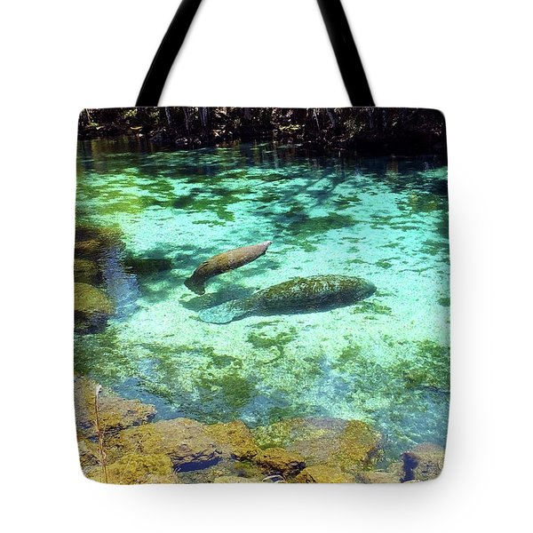 A Manatee Calf And Cow  Tote Bag