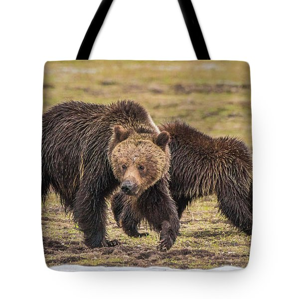 A Mini-mom And Yearling Tote Bag
