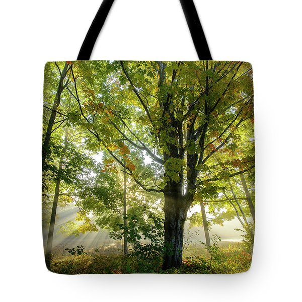A Misty Fall Morning Tote Bag