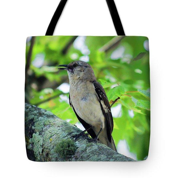 A Mockingbird Song Tote Bag