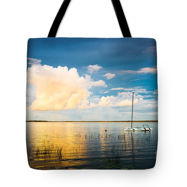 A Moment In A Jump  Tote Bag by Yuri Santin