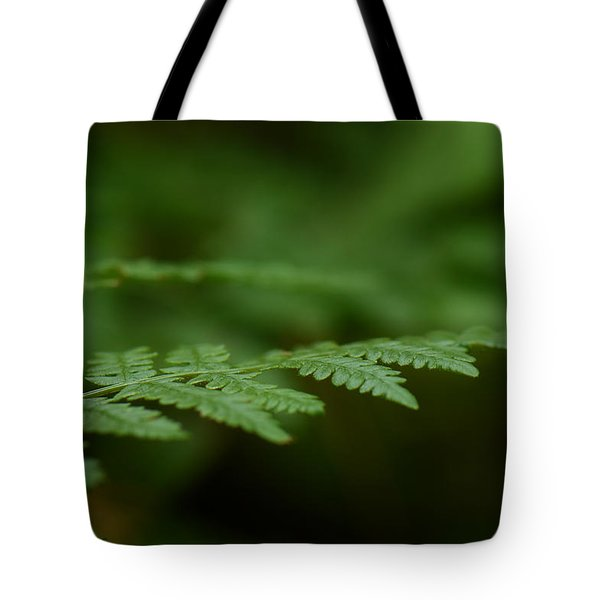 Tote Bag featuring the photograph A Moment In The Forest by Lisa Knechtel