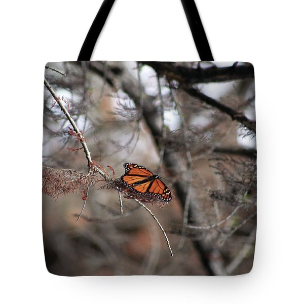 A Monarch For Granny Tote Bag