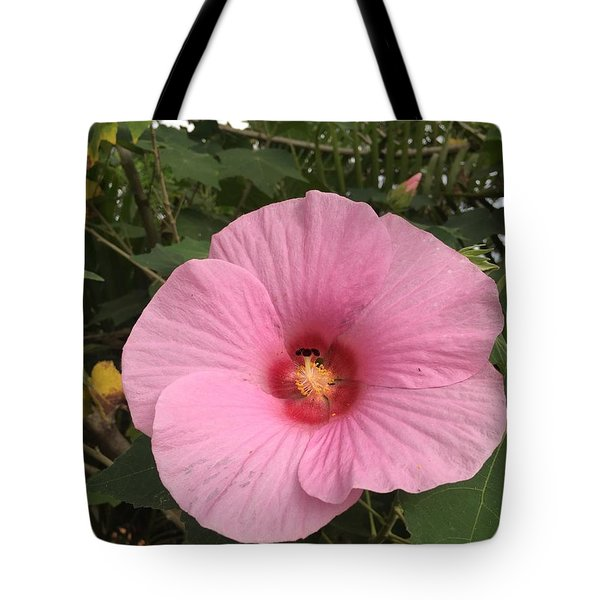 Tote Bag featuring the photograph A Morning Lover by Cindy Charles Ouellette