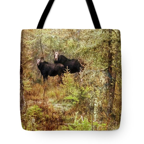 A Mother And Calf Moose. Tote Bag