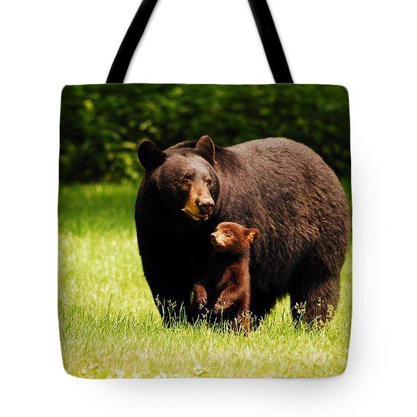 A Mothers Joy Tote Bag