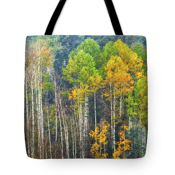 A Muted Fall Tote Bag