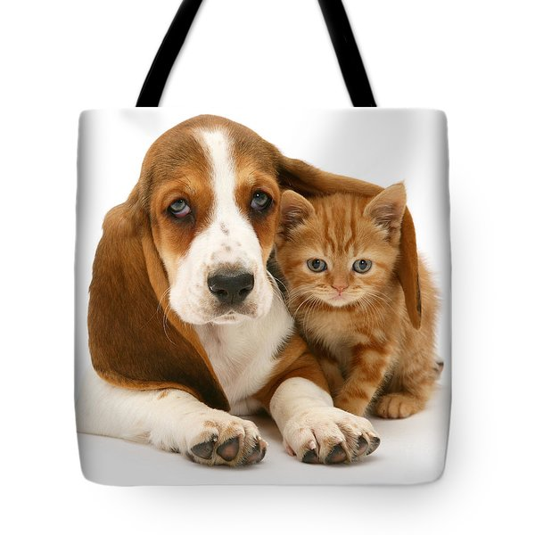 A New Meaning To Cat Flap Tote Bag