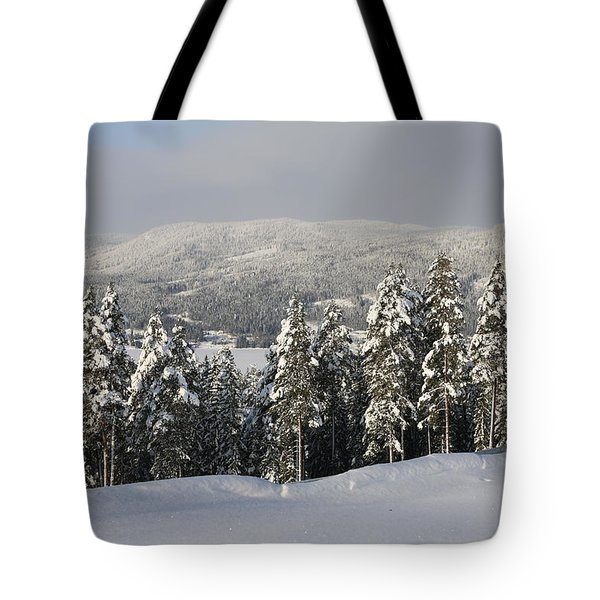 A Norwegian Valley  Tote Bag