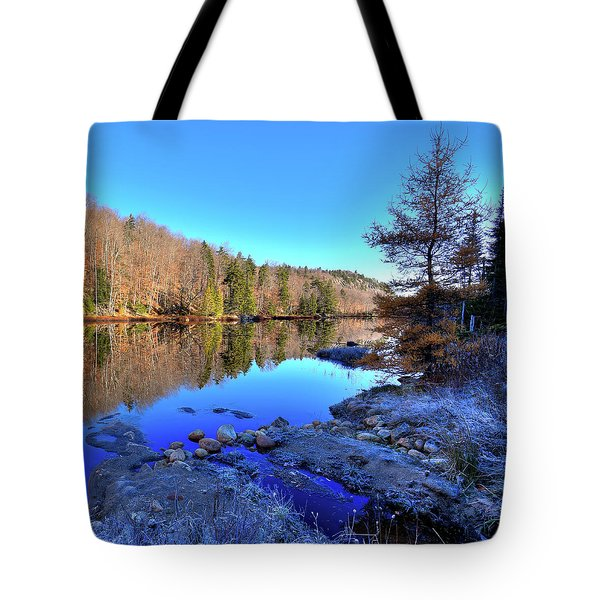 Tote Bag featuring the photograph A November Morning On The Pond by David Patterson