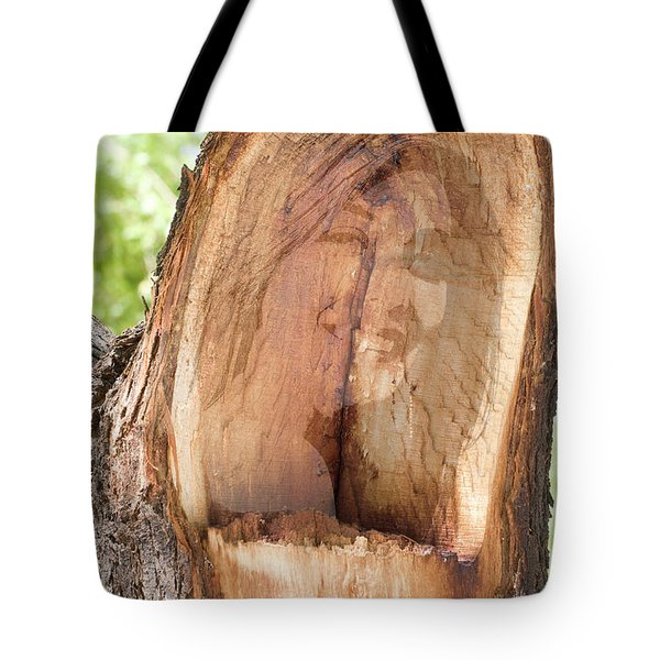 A Nymph In Every Tree Tote Bag