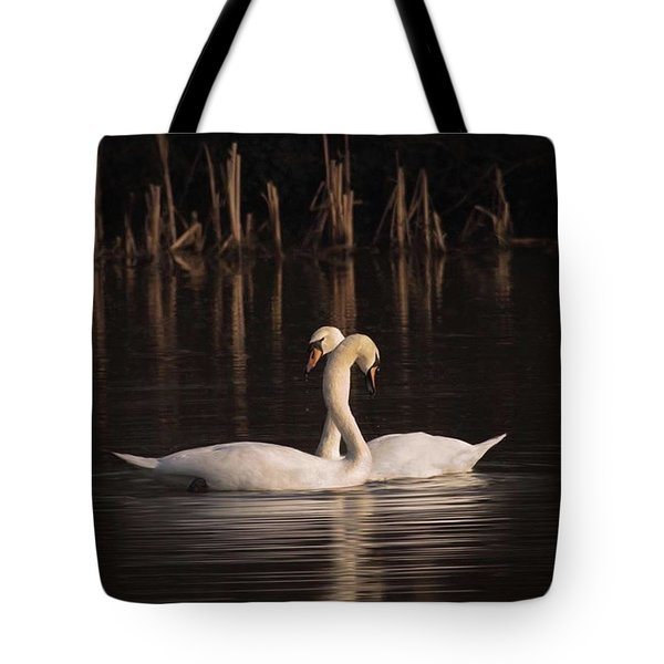 A Painting Of A Pair Of Mute Swans Tote Bag by John Edwards