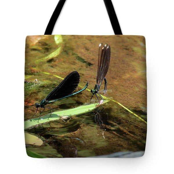 A Pair Alight Tote Bag