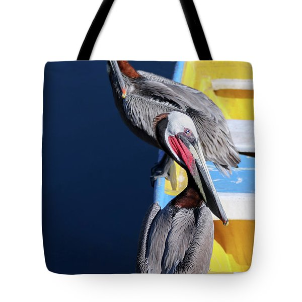 A Pair Of Brown Pelicans On A Blue And Yellow Rowboat Tote Bag