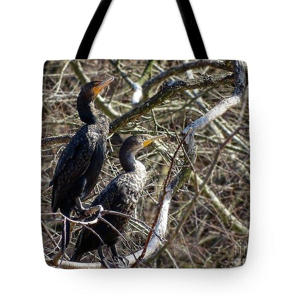 A Pair Of Cormorants Tote Bag