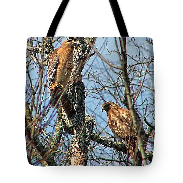 A Pair Of Hawks Tote Bag