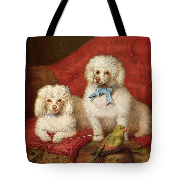 A Pair Of Poodles Tote Bag by English School