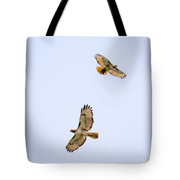 Tote Bag featuring the photograph A Pair Of Red-tailed Hawks Flying Around by Ricky L Jones