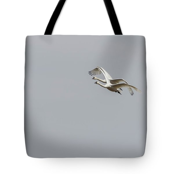 A Pair Of Swans 2017-1 Tote Bag