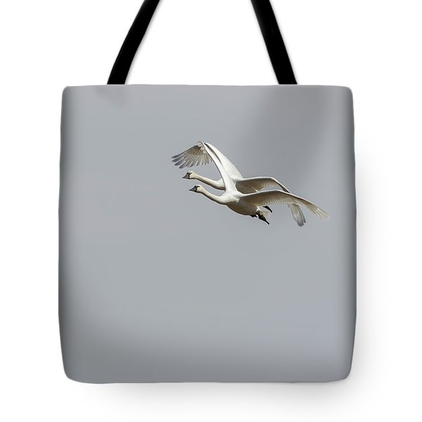 Tote Bag featuring the photograph A Pair Of Swans 2017-1 by Thomas Young