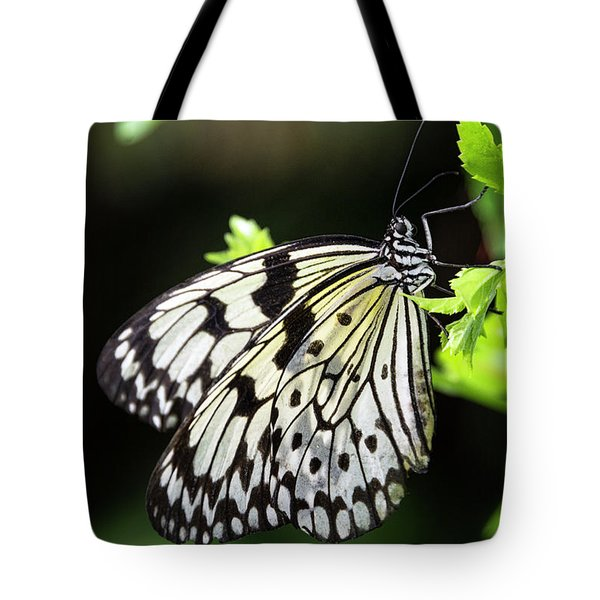 Tote Bag featuring the photograph A Paper Kite Butterfly On A Leaf  by Saija Lehtonen