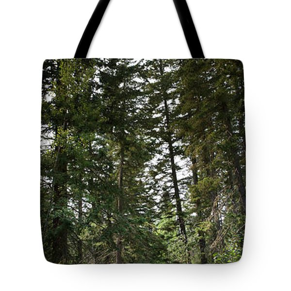 A Path Through The Trees Tote Bag