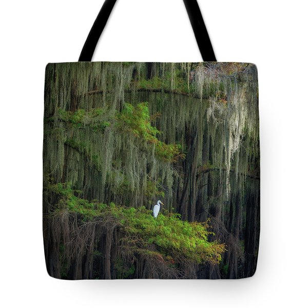 A Perch With A View Tote Bag