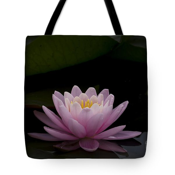 A Perfect Bloom Tote Bag by Andrea Silies