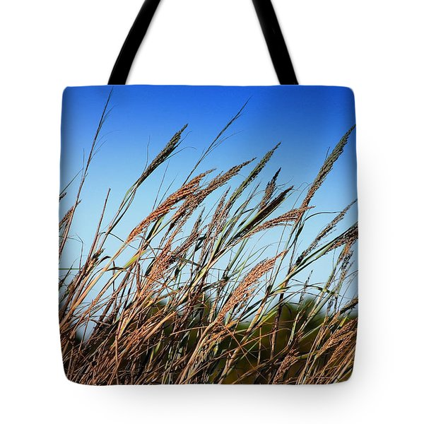 Tote Bag featuring the photograph A Picture Worth A Thousand Words by Debra Forand
