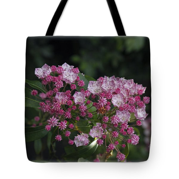 Tote Bag featuring the photograph A Pink Bunch by Elaine Teague