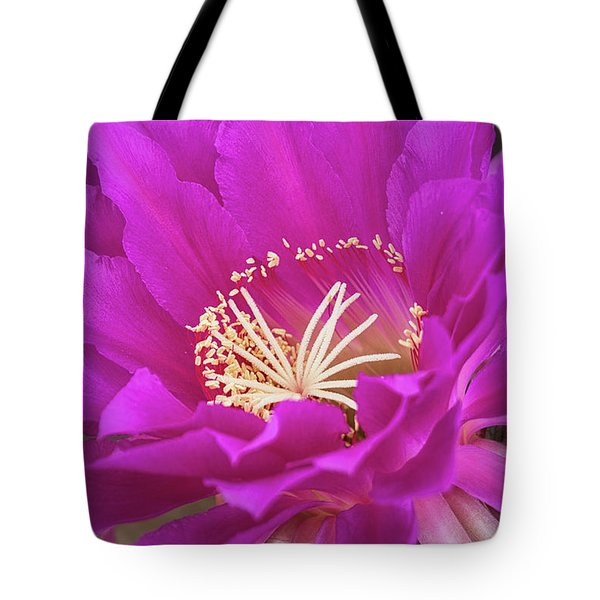 Tote Bag featuring the photograph A Pink Punch  by Saija Lehtonen