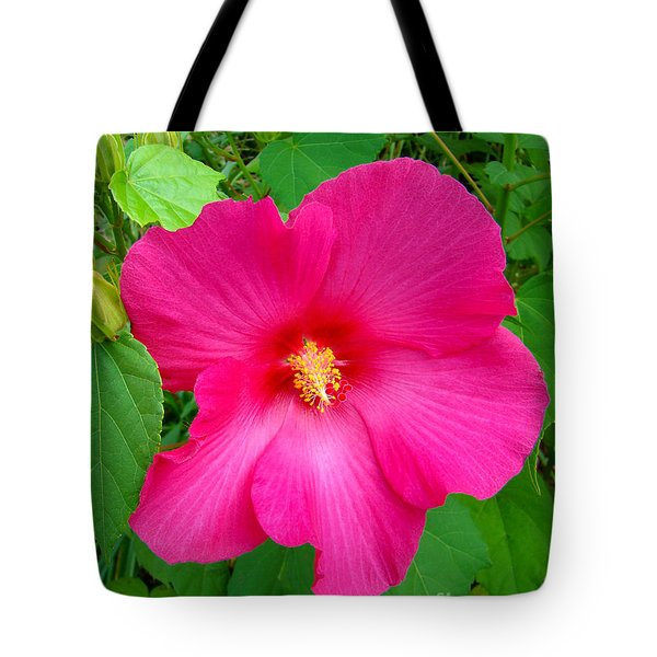 Tote Bag featuring the photograph A Pink That Pops by Sue Melvin