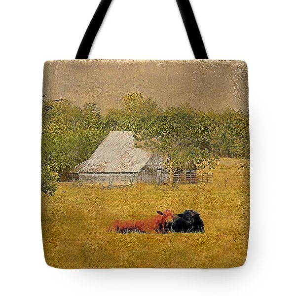 A Place For Togetherness Tote Bag by Jan Amiss Photography