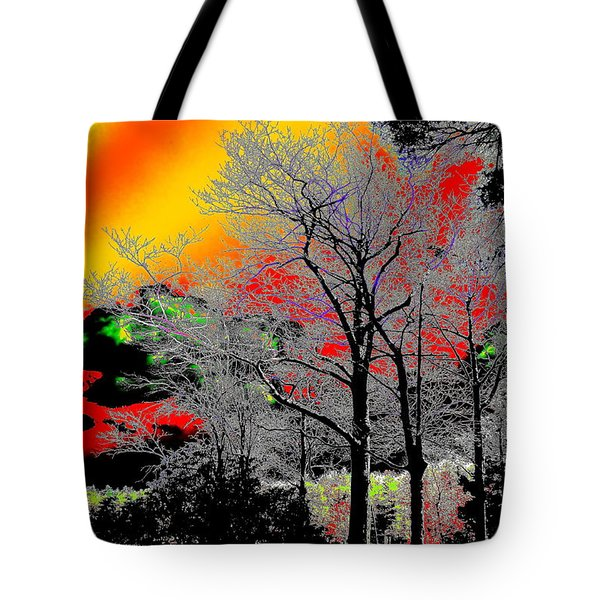 A Place I Knew Tote Bag