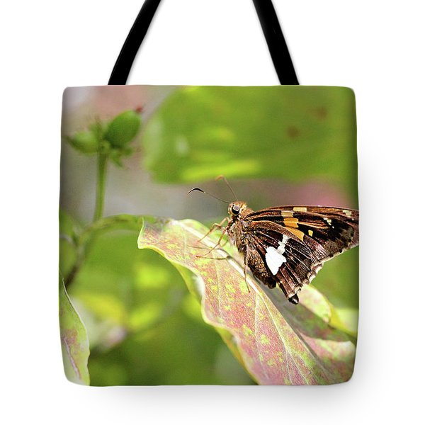Tote Bag featuring the photograph A Place Of Rest by Trina Ansel