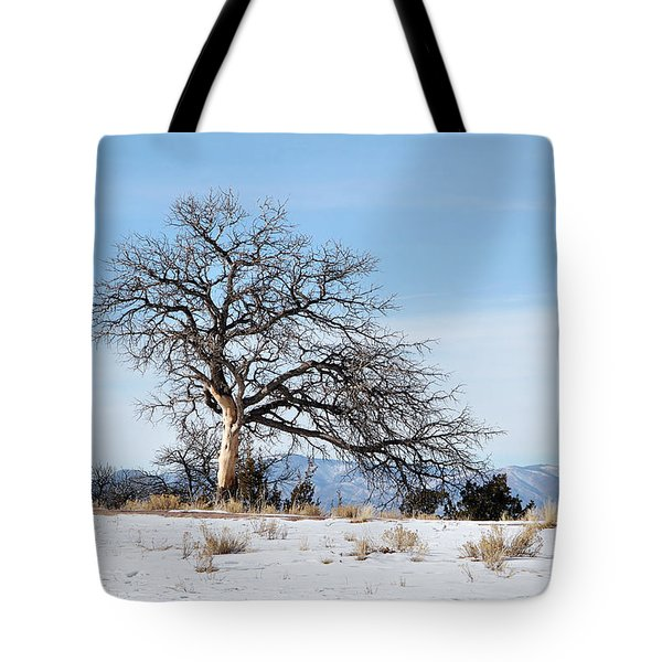 A Placid Winter Scene Tote Bag