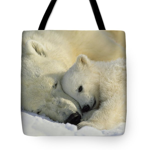 A Polar Bear And Her Cub Napping Tote Bag