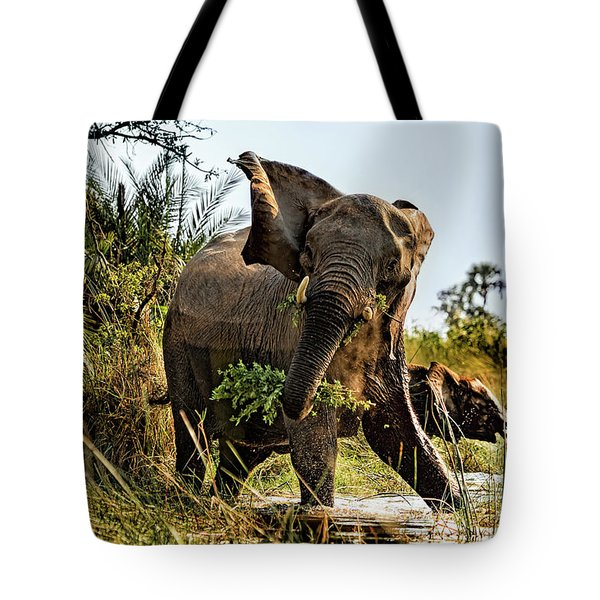 A Protective Mama Elephant With Calf  Tote Bag